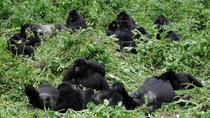 16 Days Uganda and Tanzania Wildlife Safaris, Kampala, Cultural Tours