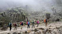 7-Days Mount Kilimanjaro Trekking Via Machame Route From Arusha , Arusha, Climbing
