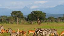 3-Day Safari in Mikumi National Park, Dar es Salaam