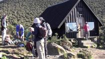 Mount Kilimanjaro Day Hike from Moshi Kilimanjaro- Marangu Route, Arusha, Hiking & Camping