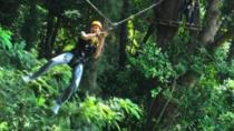 3-Hour Zip Line Jungle Adventure from Phuket, Phuket, Ziplines