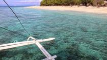 Balicasag Island Day Trip, Bohol, Day Trips