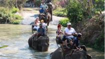 Elephant Trekking from Pattaya, Pattaya