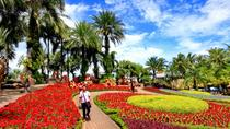 Half-Day Nong Nooch Village from Pattaya, Pattaya, Half-day Tours