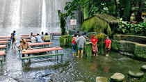 Villa Escudero Day Trip with Lunch from Manila, Manila, Day Trips