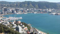 Wellington City Scenic Private Tour, Wellington, Bike & Mountain Bike Tours