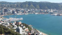 Wellington Shore Excursion: City Scenic Private Tour, Wellington