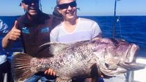Deep Sea Fishing Charter from Perth, Perth, Bike & Mountain Bike Tours