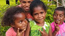 Half Day 4 hour Private Guided Tour: You choose where to go from Suva, Suva, Ports of Call Tours