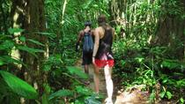 2-Day Khao Sok Jungle Safari from Krabi, Southern Thailand and Andaman Coast, Day Trips