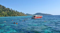 Full-Day Snorkel Trip to Koh Rok by Speedboat from Koh Lanta, Ko Lanta (Lantaøya)