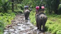 Huay Tho Waterfall Safari with Elephant Trekking and Bathing in Krabi, Krabi