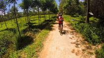 Krabi Countryside Eco Cycling Tour - Multiple Trails, Krabi