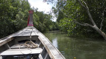 Krabi Cultural River Cruise Including Mangrove Forest, Khao Kanab Nam Cave and Koh Klang Community,...