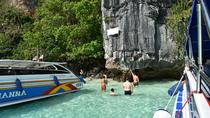 Phi Phi Island Speedboat Tour by Sea Eagle from Krabi