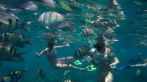 Snorkel Tour to Koh Phi Phi by Speed Boat from Koh Lanta, Ko Lanta, Snorkeling