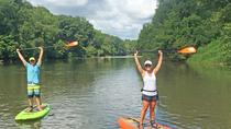 Halbtages-Stand-Up Paddleboard Tour durch Biltmore Estate, Asheville