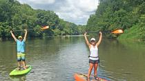 Half-Day Stand-Up Paddleboard Tour through Biltmore Estate, Asheville, Stand Up Paddleboarding