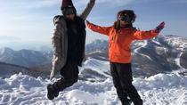 Full Day Snow Monkey and Snow Tour in the Shiga-kogen Highlands in Nagano, Nagano, Full-day Tours