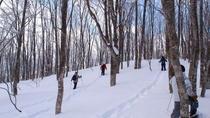 Full Day Snow Monkey and Snowshoeing Tour, Nagano, Full-day Tours