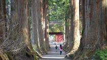 Full Day Togakushi Nature Hike and Ninja Tour, Nagano, Day Trips
