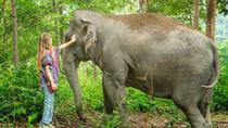 Ethical Choice: Half Day Jungle Sanctuary in Phuket with Lunch, Phuket, Cultural Tours