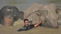 Ethical Choice: Phuket Jungle Sanctuary, Phuket, Cultural Tours