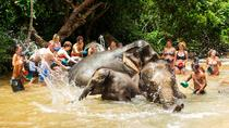 Ethical Choice: Phuket Jungle Sanctuary, Phuket, Cultural Tours