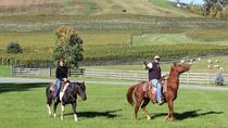 Private Vineyard Tour on Horseback with VIP Wine Tasting, Charlottesville, Horseback Riding