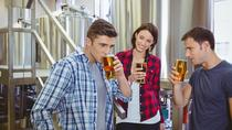 Private Virginia Craft Beer Tour, Charlottesville, Beer & Brewery Tours