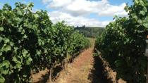 Willamette Valley Wine-Tasting from Portland, Portland, Half-day Tours