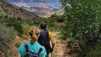 Private Grand Canyon Day Hike, Flagstaff, Full-day Tours