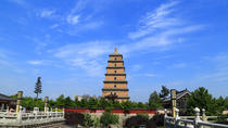 Ancient Xian Private City Day Tour, Xian, Private Sightseeing Tours