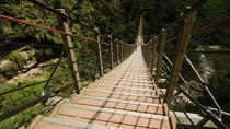 Nantou Walking On Sky Ladder Day Tour from Taichung, Taichung, Day Trips