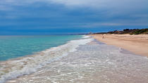 Pinnacles Day Trip Including Yanchep and Scarborough Beach, Perth, Day Trips