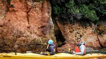 Akaroa Shore Excursion: Small-Group Wildlife and Sea-Kayaking Safari in Akaroa, Akaroa, Ports of ...
