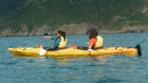 Shore Excursion: Scenic Cruiser Sea Kayaking Safaris in Akaroa, Akaroa, Ports of Call Tours