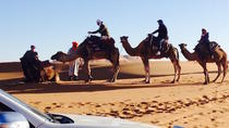 Sahara Desert Private Tour from Marrakech, Marrakech, Multi-day Tours