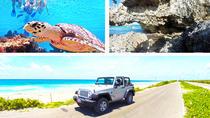 Custom Private Cozumel Jeep Tour: All-Inclusive Private Tour, Cozumel, 4WD, ATV & Off-Road Tours