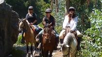 Horseback Riding Tour to Sacsayhuaman, Quenqo, Puka Pucara and Tambomachay, Cusco, Horseback Riding