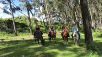 Mystical Horseback Riding Tour from Cusco , Cusco, Horseback Riding