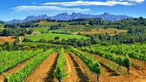 Montserrat and Penedès Guided Day Tour from Barcelona, Barcelona, Wine Tasting & Winery Tours