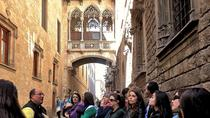 Old Town and Gòtic Quarter in Barcelona: Private Guided Walking Tour, Barcelona, Walking Tours