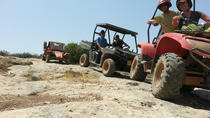 Desert Tour from Tel Aviv with Buggy and Camel Ride, Tel Aviv