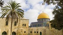 Full-Day Trip of Jerusalem and Bethlehem from Tel Aviv, Tel Aviv, Half-day Tours