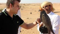 Falcon 1—Private Dubai Falconry Safari, Dubai, Private Sightseeing Tours