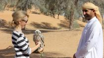 Small-Group Dubai Interactive Falconry Experience and Wildlife Drive with Optional Breakfast, ...