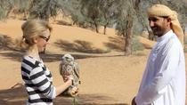 Small-Group: Falcon 2 - Dubai Falconry Safari, Dubai, Nature & Wildlife