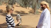 Small-Group Tour: Falcon 2—Dubai Falconry Safari, Dubai, Nature & Wildlife