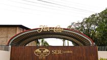 Flor de Caña Rum Distillery and León City Tour from Granada, Granada, Day Trips